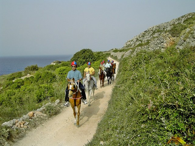 Gozo horse riding holidays, Malta
